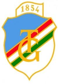 Toldy_Logo