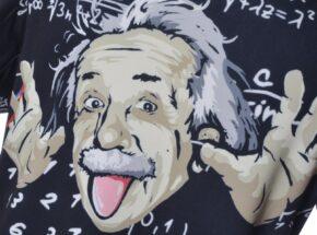 https://gwiku18.at/wp-content/uploads/2020/06/Einstein-290x215.jpg
